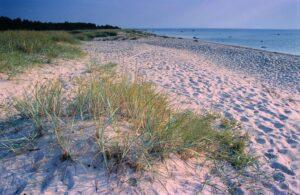 peraküla rand spithami puhkemajad